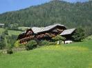 Krönhof mi Sommer_1